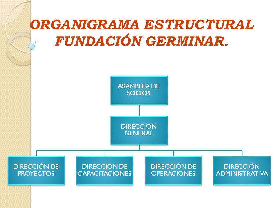 ORGANIGRAMA ESTRUCTURAL FUNDACIÓN GERMINAR.