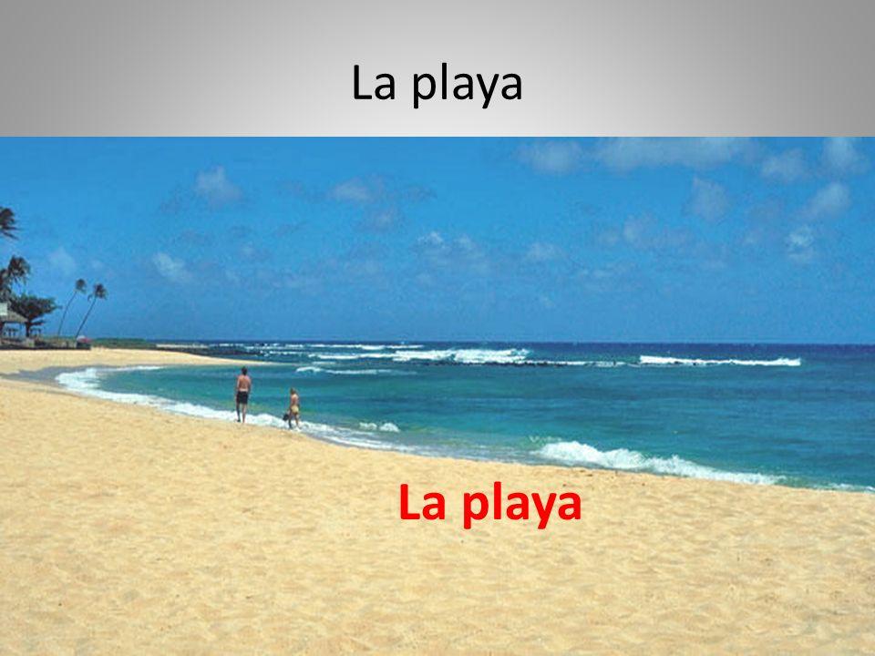 La playa La playa