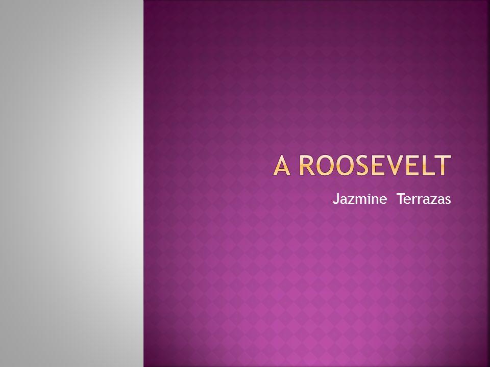 A Roosevelt Jazmine Terrazas
