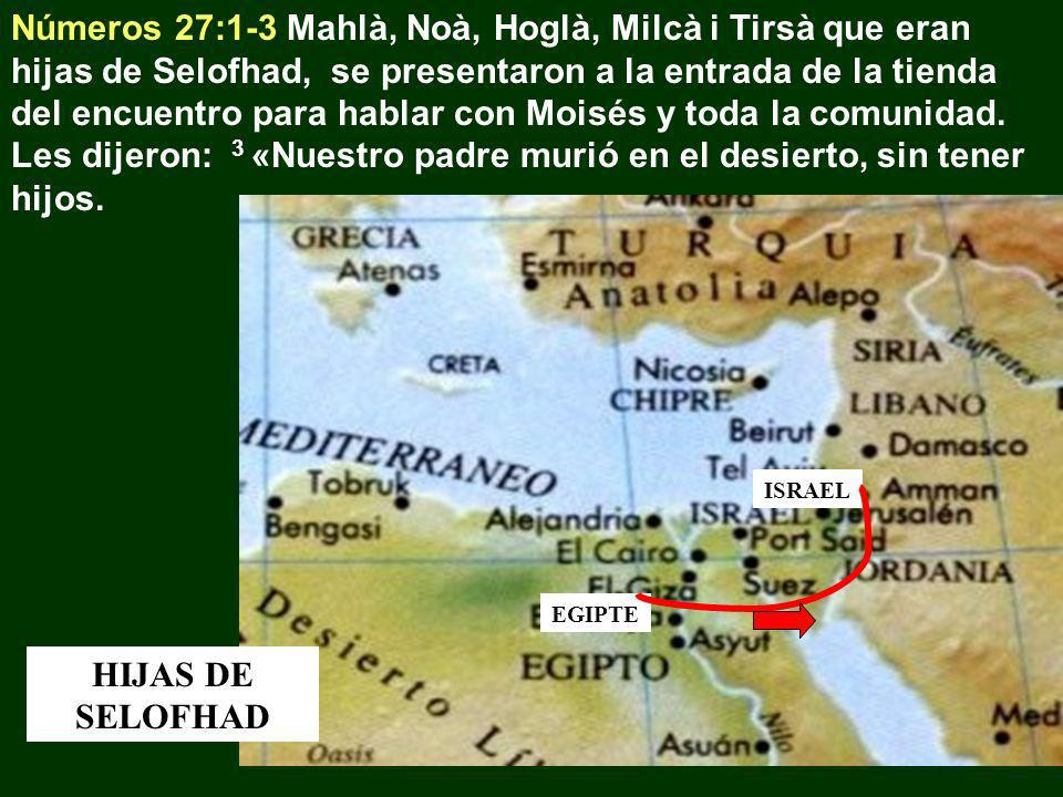 Números 27:1-3 Mahlà, Noà, Hoglà, Milcà i Tirsà que eran hijas de Selofhad, se presentaron a la entrada de la tienda del encuentro para hablar con Moisés y toda la comunidad. Les dijeron: 3 «Nuestro padre murió en el desierto, sin tener hijos.