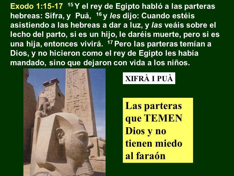 Las parteras que TEMEN Dios y no tienen miedo al faraón