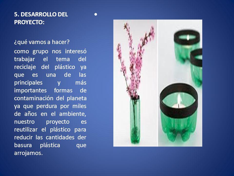 5. DESARROLLO DEL PROYECTO:
