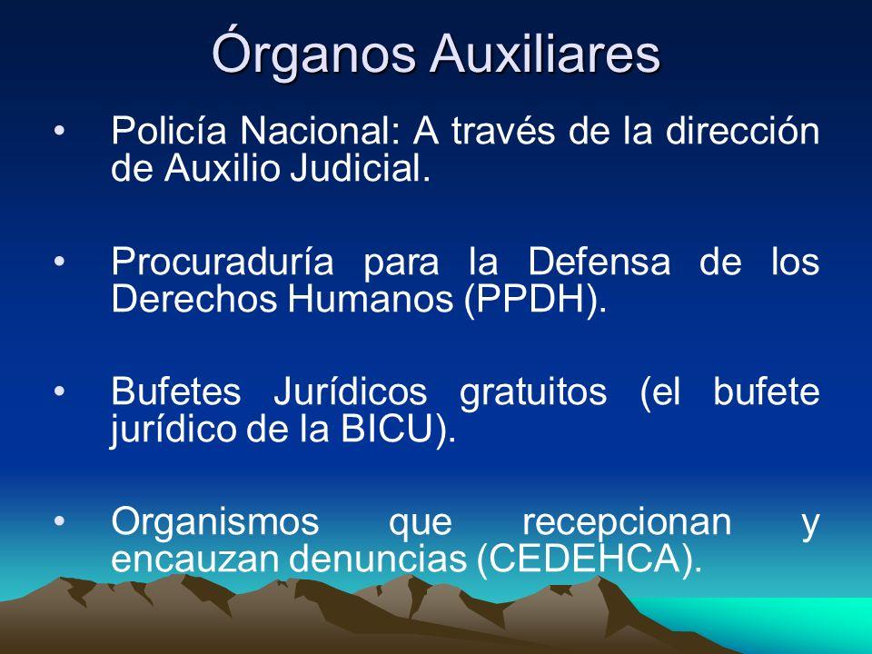Órganos Auxiliares Policía Nacional: A través de la dirección de Auxilio Judicial. Procuraduría para la Defensa de los Derechos Humanos (PPDH).