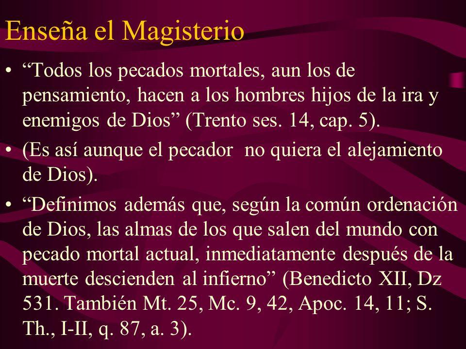 Enseña el Magisterio