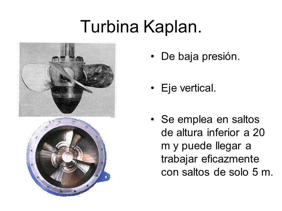 Turbina Kaplan. De baja presión. Eje vertical.