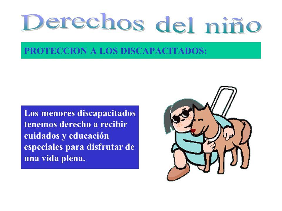 PROTECCION A LOS DISCAPACITADOS: