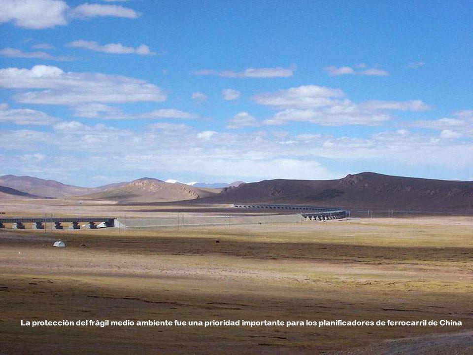 La protección del frágil medio ambiente fue una prioridad importante para los planificadores de ferrocarril de China