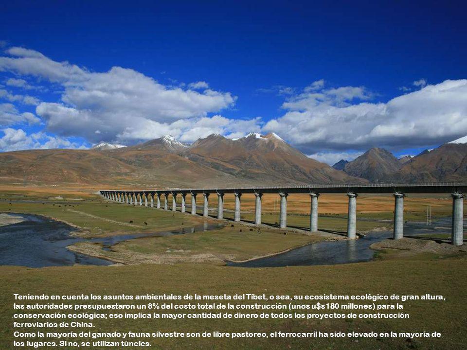 Teniendo en cuenta los asuntos ambientales de la meseta del Tíbet, o sea, su ecosistema ecológico de gran altura, las autoridades presupuestaron un 8% del costo total de la construcción (unos u$s180 millones) para la conservación ecológica; eso implica la mayor cantidad de dinero de todos los proyectos de construcción ferroviarios de China.