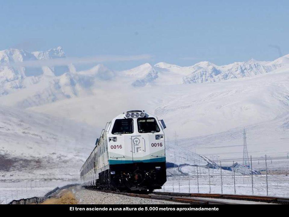 El tren asciende a una altura de 5.000 metros aproximadamente