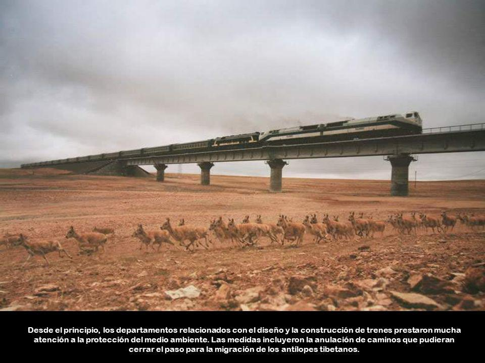 Desde el principio, los departamentos relacionados con el diseño y la construcción de trenes prestaron mucha atención a la protección del medio ambiente.