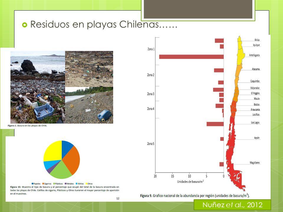 Residuos en playas Chilenas……