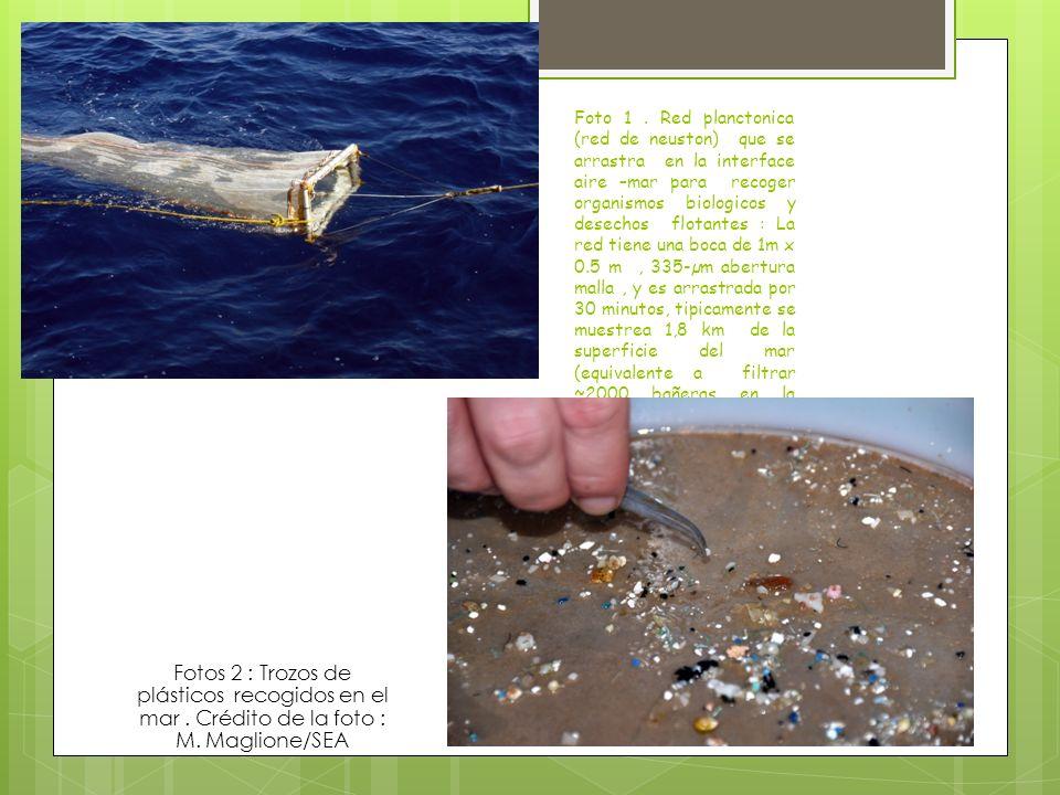 Foto 1 . Red planctonica (red de neuston) que se arrastra en la interface aire –mar para recoger organismos biologicos y desechos flotantes : La red tiene una boca de 1m x 0.5 m , 335-µm abertura malla , y es arrastrada por 30 minutos, tipicamente se muestrea 1,8 km de la superficie del mar (equivalente a filtrar ~2000 bañeras en la superficie del agua.
