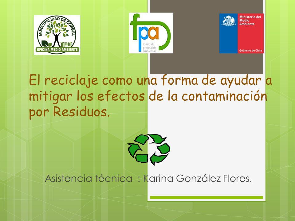 Asistencia técnica : Karina González Flores.