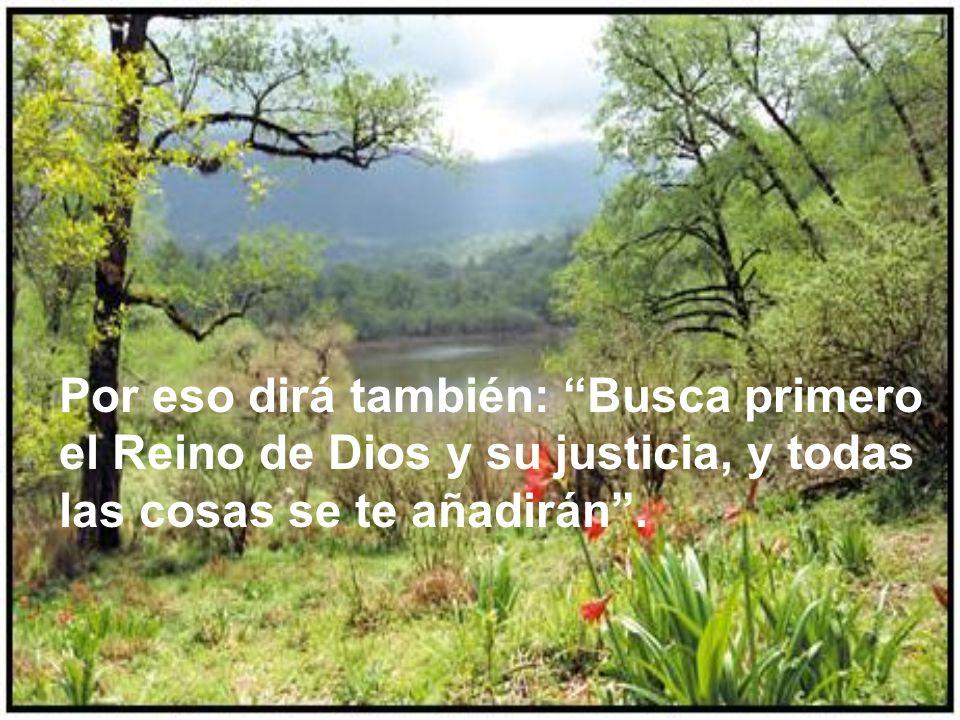 Por eso dirá también: Busca primero el Reino de Dios y su justicia, y todas las cosas se te añadirán .