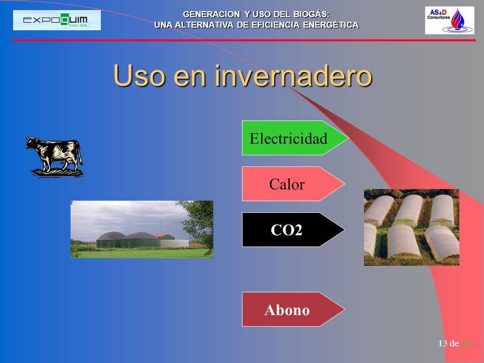 Uso en invernadero Electricidad Calor CO2 Abono