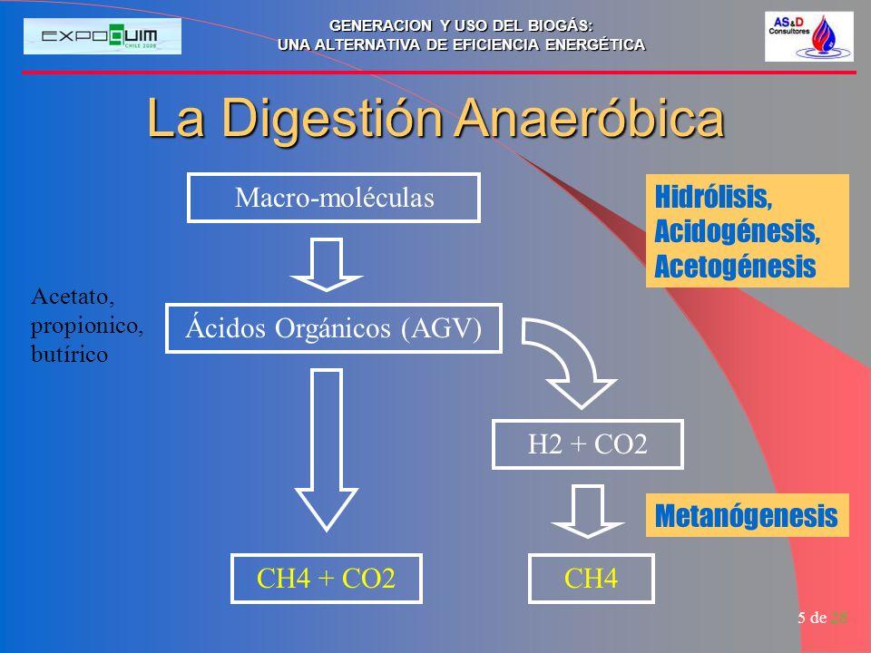 La Digestión Anaeróbica