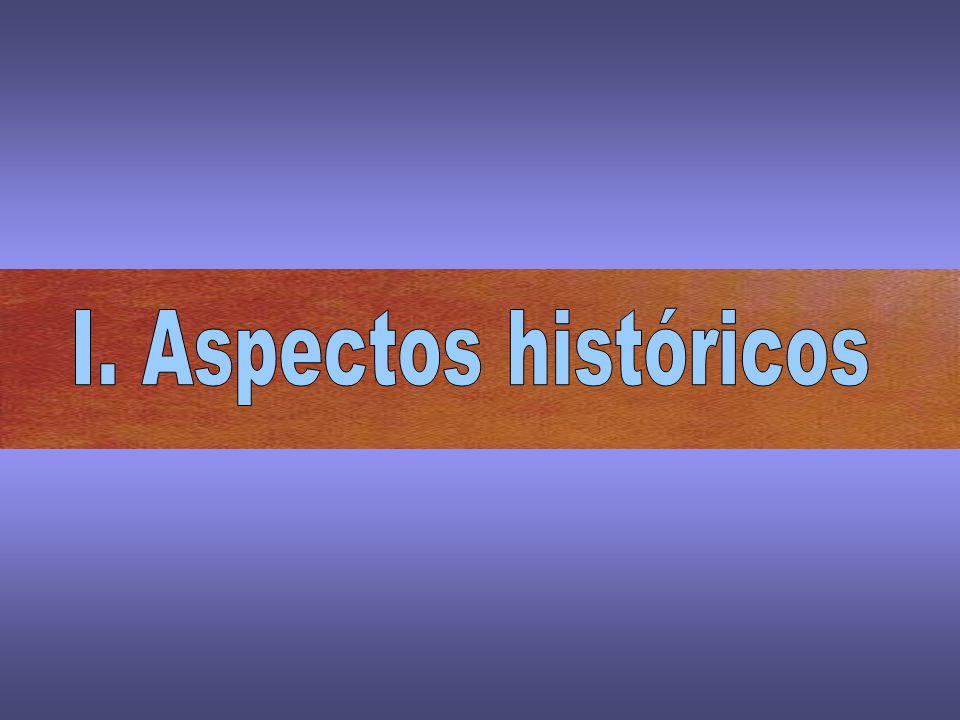 I. Aspectos históricos
