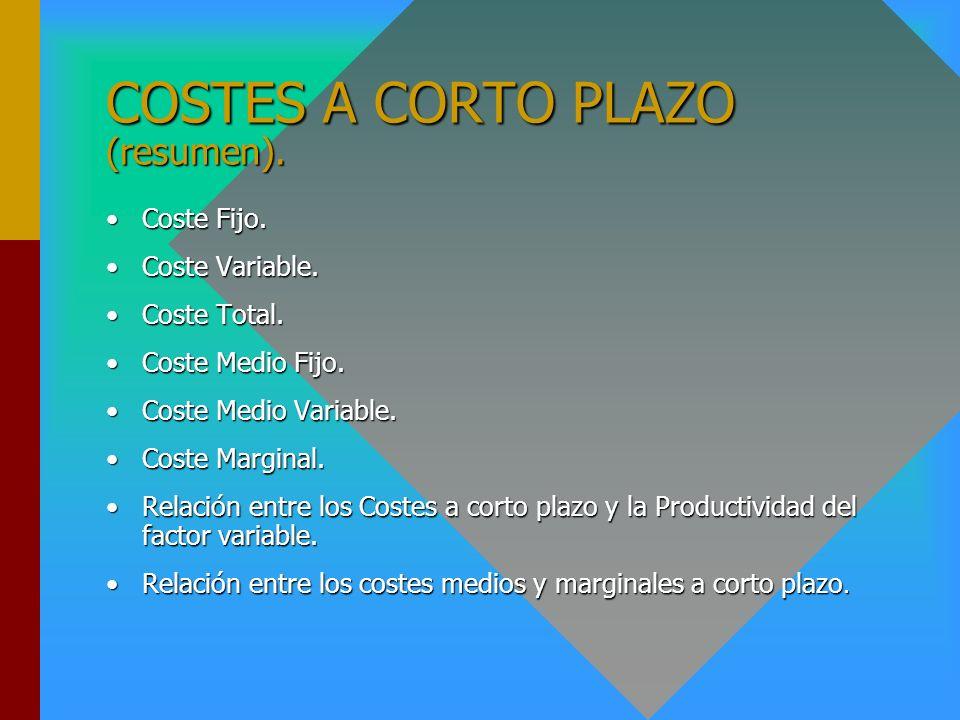 COSTES A CORTO PLAZO (resumen).