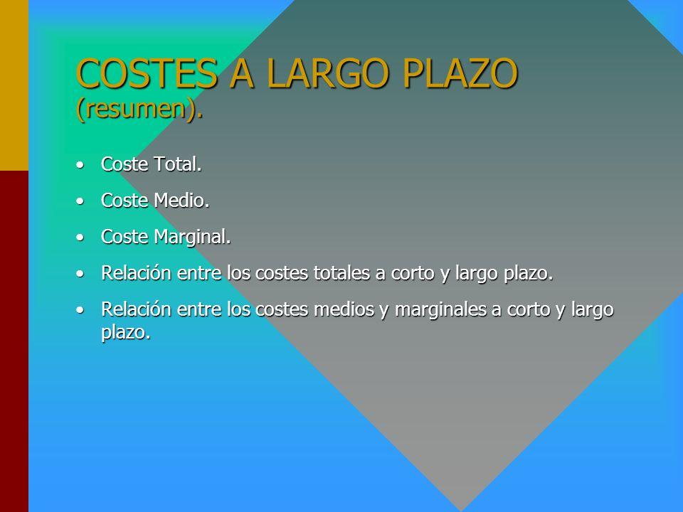 COSTES A LARGO PLAZO (resumen).