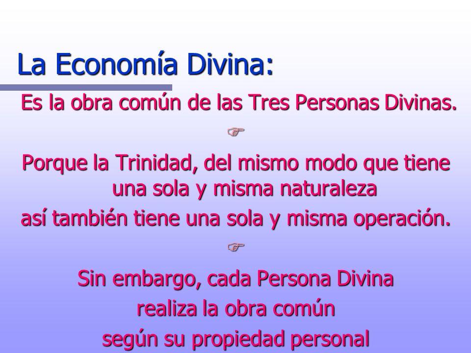 La Economía Divina: Es la obra común de las Tres Personas Divinas.