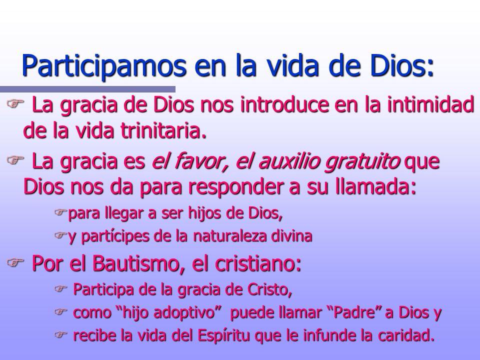 Participamos en la vida de Dios: