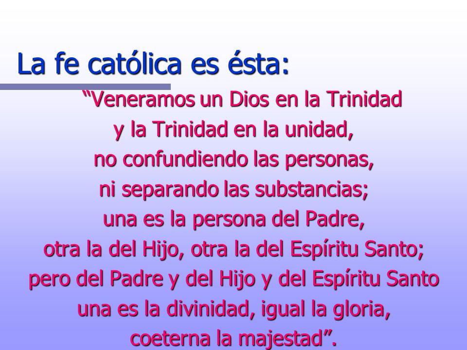 La fe católica es ésta: Veneramos un Dios en la Trinidad