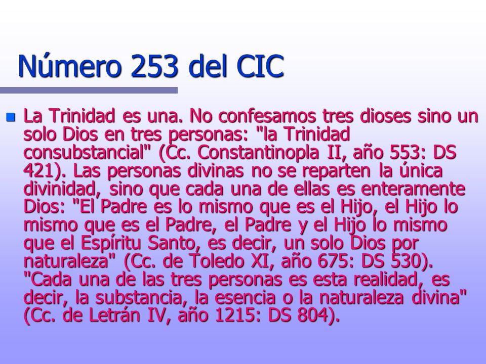 Número 253 del CIC