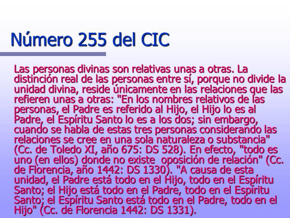 Número 255 del CIC