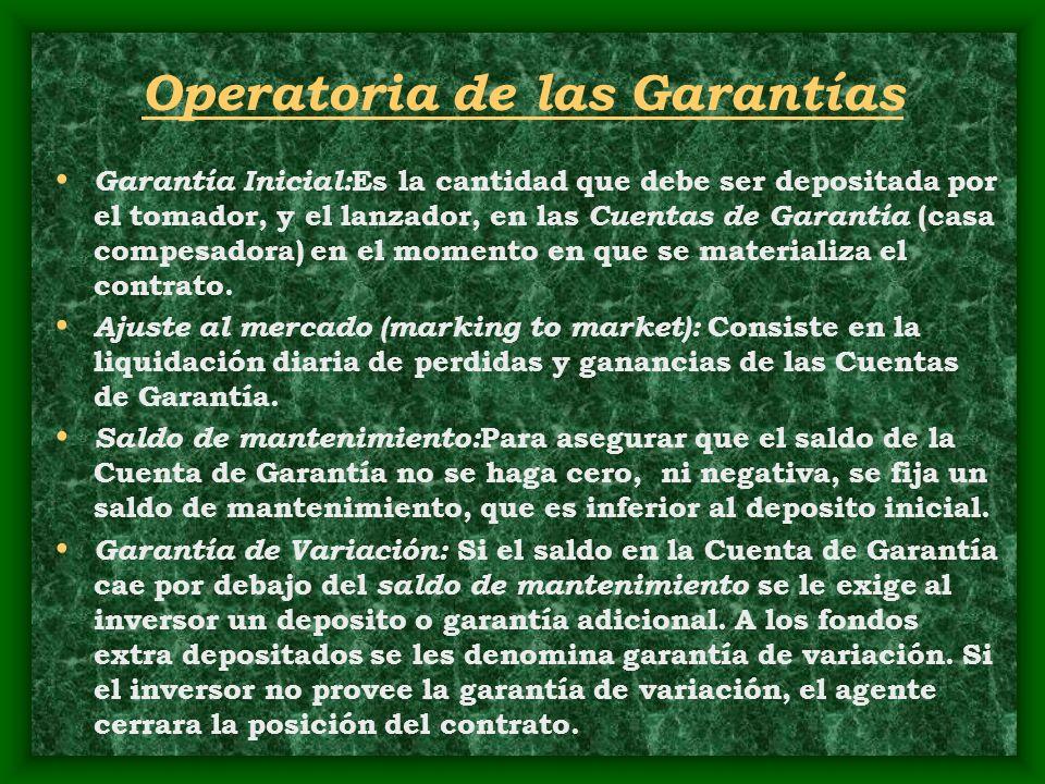 Operatoria de las Garantías