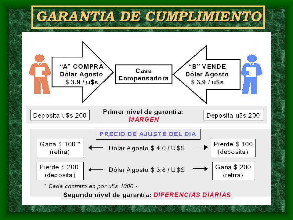 GARANTIA DE CUMPLIMIENTO