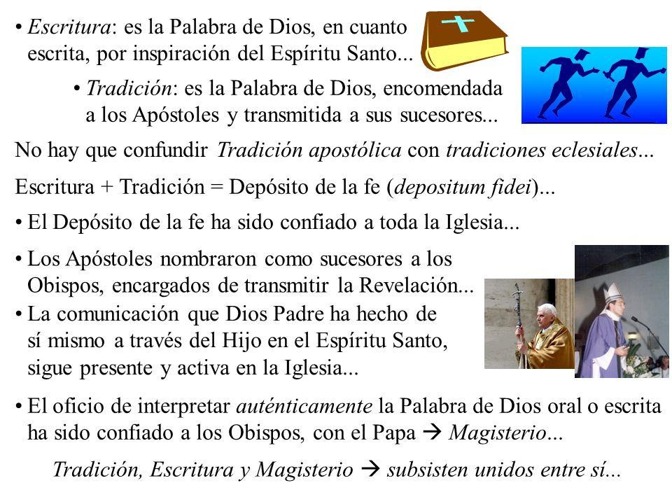 Tradición, Escritura y Magisterio  subsisten unidos entre sí...
