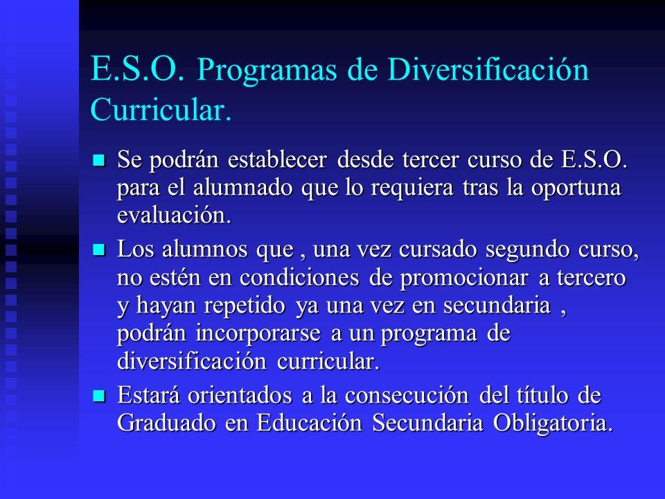 E.S.O. Programas de Diversificación Curricular.