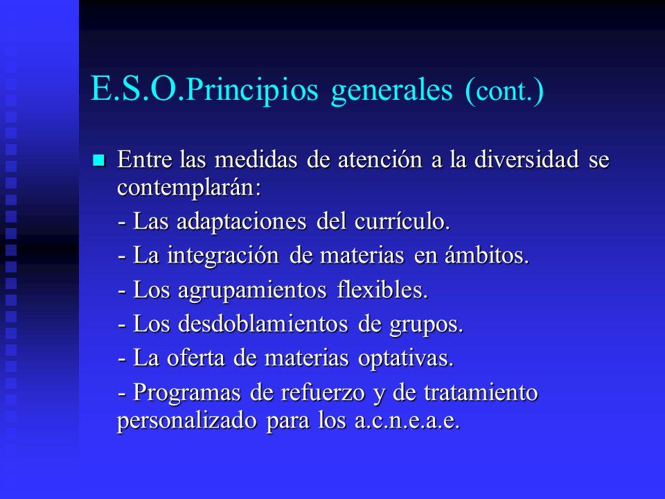 E.S.O.Principios generales (cont.)
