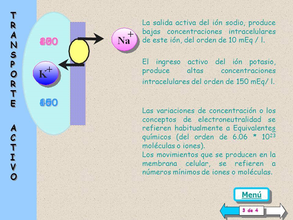 TRANSPORTE ACTIVO. La salida activa del ión sodio, produce bajas concentraciones intracelulares de este ión, del orden de 10 mEq / l.