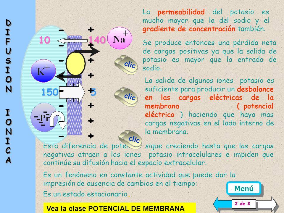 - + - + - + - + - + - + - + - + 10 140 150 5 DIFUSION IONICA