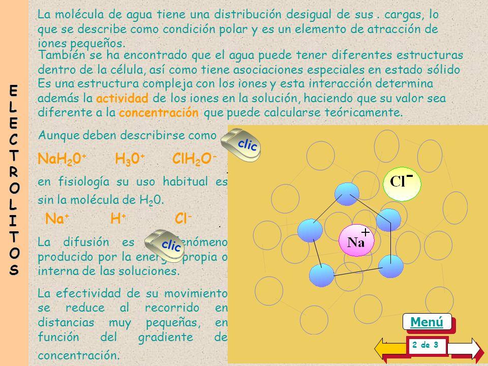 ELECTROLITOS NaH20+ H30+ ClH2O- Na+ H+ Cl-
