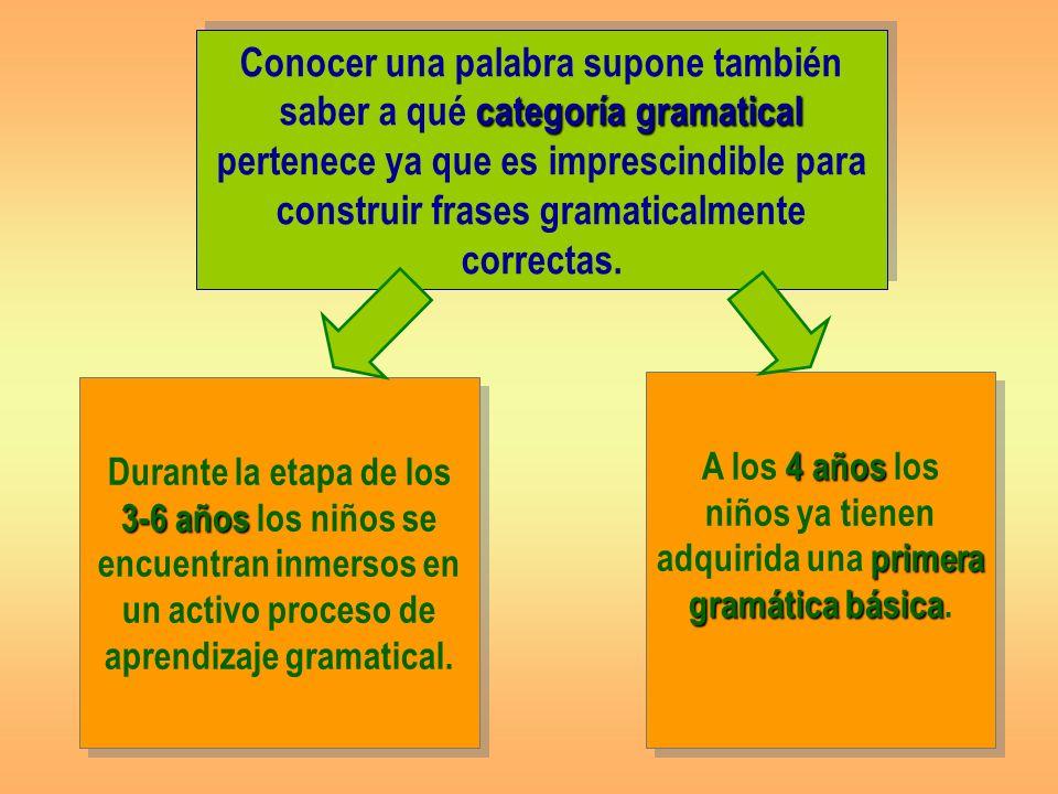 Conocer una palabra supone también saber a qué categoría gramatical pertenece ya que es imprescindible para construir frases gramaticalmente correctas.