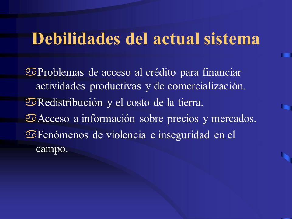 Debilidades del actual sistema