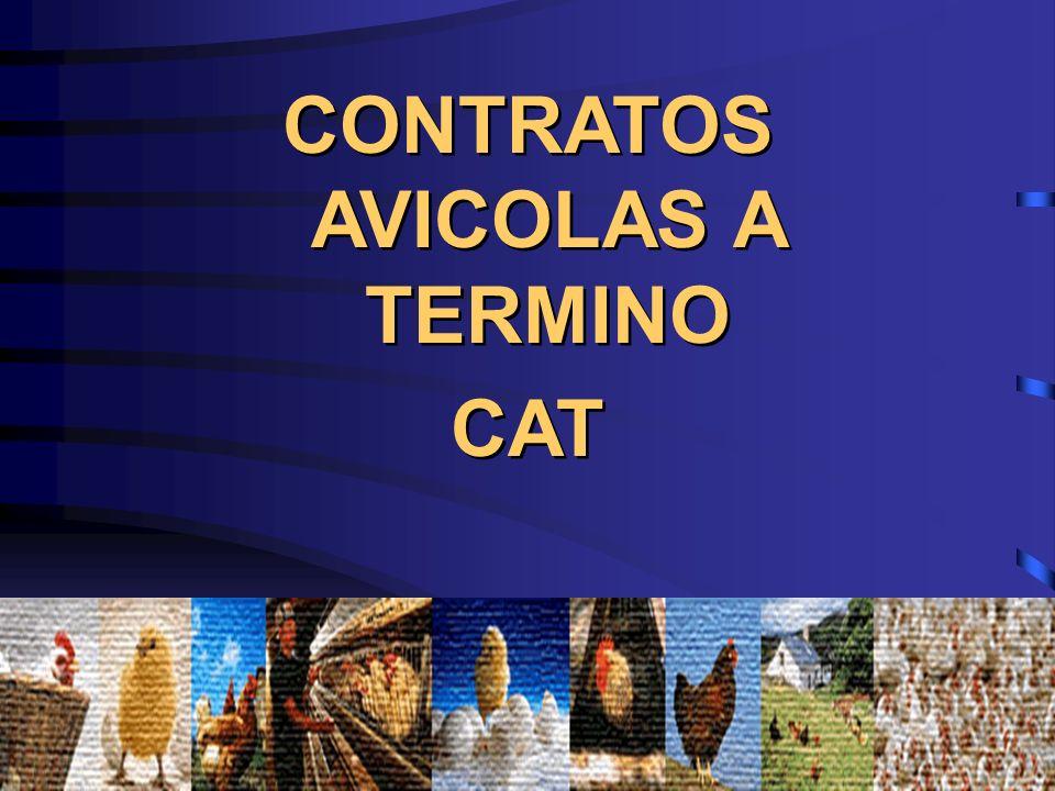 CONTRATOS AVICOLAS A TERMINO