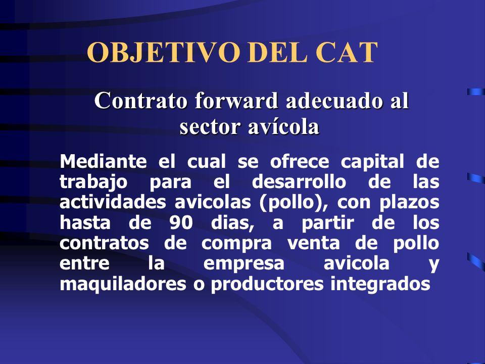 Contrato forward adecuado al sector avícola
