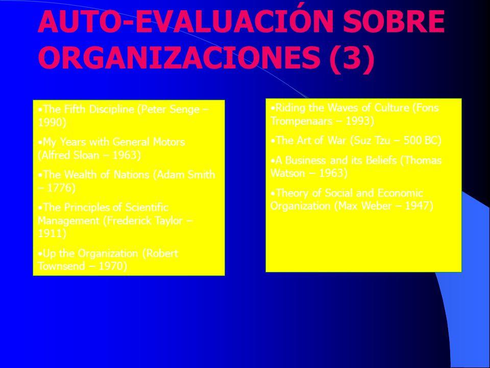 AUTO-EVALUACIÓN SOBRE ORGANIZACIONES (3)