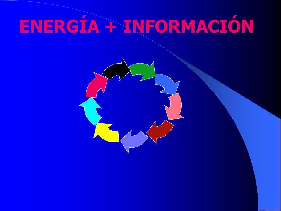 ENERGÍA + INFORMACIÓN
