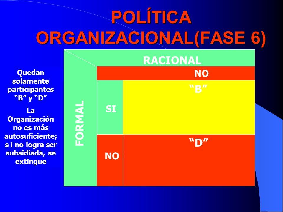 POLÍTICA ORGANIZACIONAL(FASE 6)
