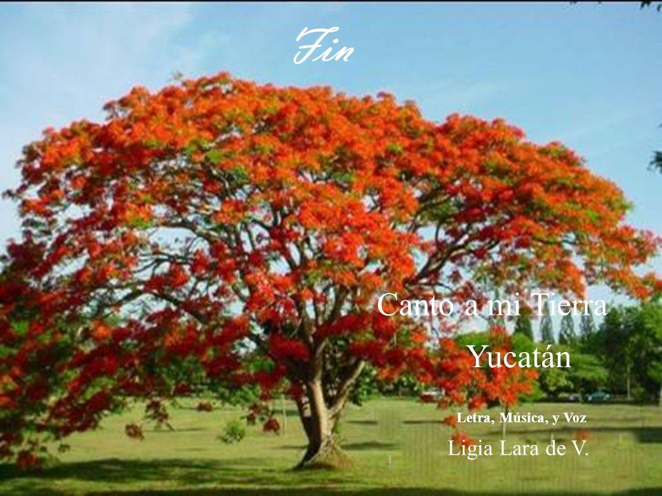 Fin Canto a mi Tierra Yucatán Letra, Música, y Voz Ligia Lara de V.