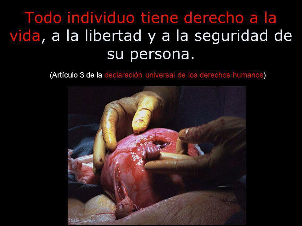 (Artículo 3 de la declaración universal de los derechos humanos)