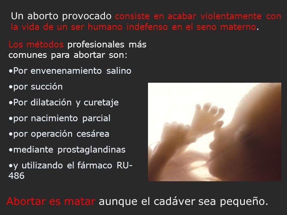 Abortar es matar aunque el cadáver sea pequeño.
