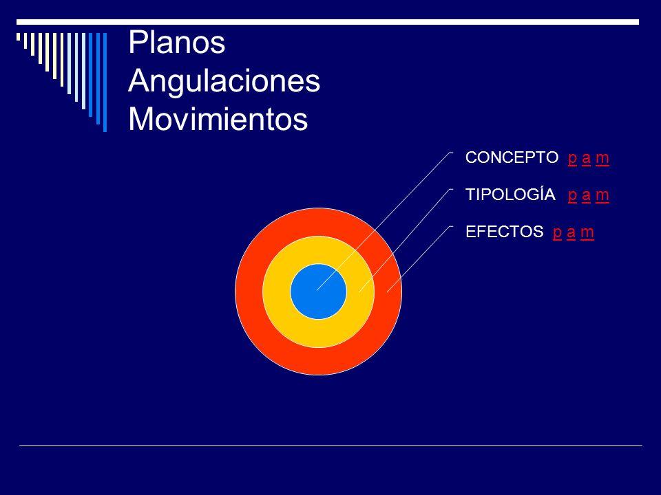 Planos Angulaciones Movimientos