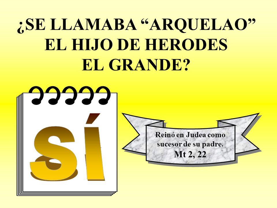 ¿SE LLAMABA ARQUELAO EL HIJO DE HERODES EL GRANDE