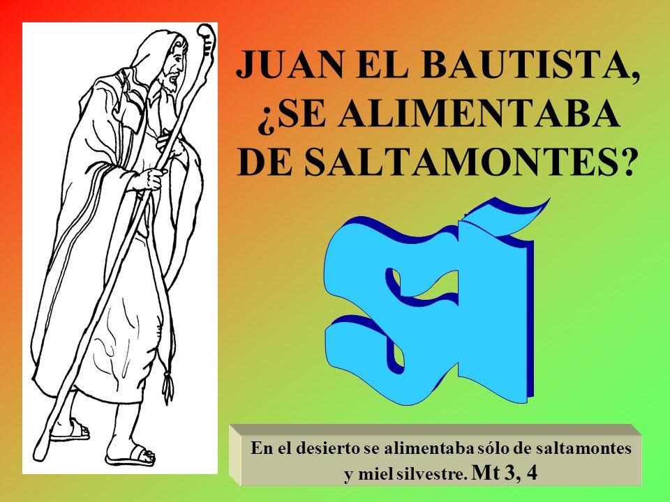 JUAN EL BAUTISTA, ¿SE ALIMENTABA DE SALTAMONTES
