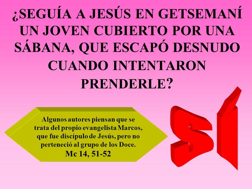 ¿SEGUÍA A JESÚS EN GETSEMANÍ UN JOVEN CUBIERTO POR UNA SÁBANA, QUE ESCAPÓ DESNUDO CUANDO INTENTARON PRENDERLE